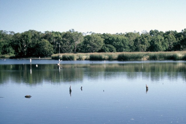 View looking west across the southern basin of East Lake.  White PVC pipes are thermistor strings, and surface, mid-level and bottom temperature loggers.  The anemometer mast is visible in the centre along with remnants of fencing and tree stumps, foreground.