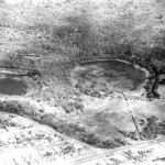 Oblique aerial shot taken circa 1959 as part of the planning for the Perry Lakes stadium complex.  Shot taken looking SW.  East Lake is partially truncated.  This is possibly the best photo of the original wetland vegetation in West Lake.  A cropped section of this photo appears in Chapter 2 as Plate 2.4b.