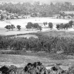 View across West Lake (foreground) to East Lake circa 1961.  Site works for the Perry Lakes stadium in background.